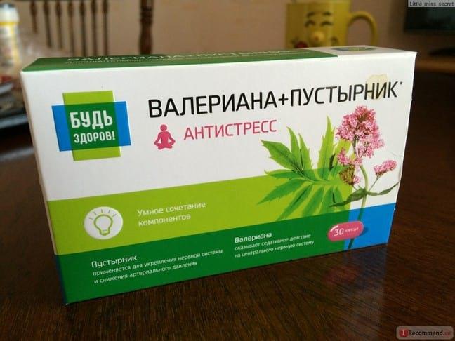 Лечебные свойства пустырника, народные рецепты и аптечные препараты
