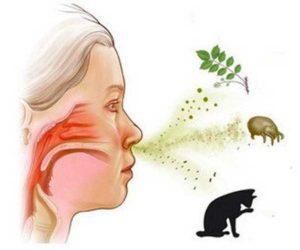 распространенные аллергены