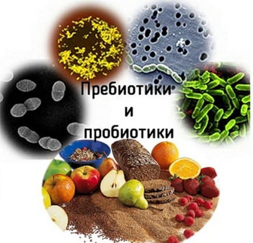 Зачем нужны пробиотики и пребиотики для кишечника